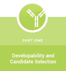 Developability and Candidate Selection